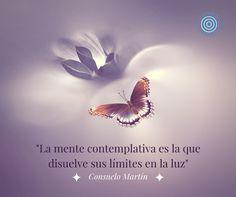 """""""La mente contemplativa es la que disuelve sus límites en la luz"""". Consuelo Martín"""