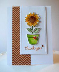 Lawn Fawn - Clear Acrylic Stamps - Our Friendship Grows