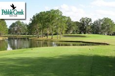 $19 for 18 Holes with Cart, Range Balls, 2-for-1 Draft Beer or Fountain Drink and $5 Off Your Next Round at Pebble Creek Golf Club in Tampa, FL.