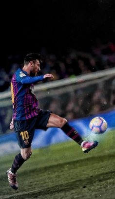 Lio in Action