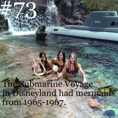 this is actually the coolest thing i've ever seen and for a while i thought it was a lie but it's actually true! I wish I was one of the mermaids