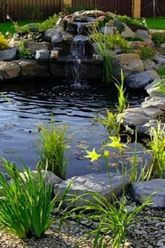 29 easy koi pond ideas you can create to accent your landscape koi ponds design no 12639 koi_pond garden_pond landscaping gardenpondideas 15 japanese koi ponds for your garden Backyard Water Feature, Ponds Backyard, Garden Ponds, Backyard Waterfalls, Bog Garden, Garden Site, Pond Landscaping, Landscaping With Rocks, Tropical Landscaping