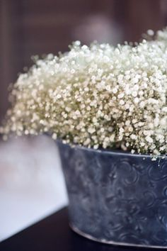 Baby's breath bucket