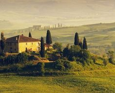 Toscana. Under The Tuscan Sun, Holiday 2014, Toscana, Travel Inspiration, Life Is Good, The Good Place, Vineyard, Explore, Landscape