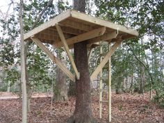 simple backyard tree forts - Google Search