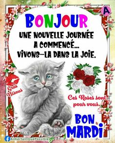 Bon Mardi, Nouvel An, Facebook, Happy Tuesday, Good Night Image, Good Morning Images, Love Pictures, Adorable Animals, Handsome Quotes