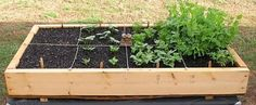 25 Tips for Gardening in Small Spaces