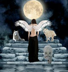 ~~ The Spirit Of The Wolf ~~  Dalla Alfa a Omega, ognuno ha il loro posto nella confezione. L'Alpha: grande, forte, imponente, rispettato dal pacco. Un vero simbolo della leadership. L'Omega: tranquillo, sottomesso, il più basso membro classifica del branco ancora altamente apprezzato dal gruppo come l'istigatore di gioco e di divertimento. La confezione mangia, dorme, gioca, e caccia come uno. Ciascun membro del branco imparare rapidamente il loro posto e unirsi il gruppo contribuendo a…