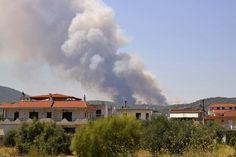 Σχεδιασμός και δράσεις Πολιτικής για την αντιμετώπιση κινδύνων λόγω των δασικών πυρκαγιών κατά την αντιπυρική περίοδο 2015.