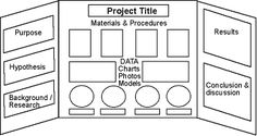 science fair display boards - Google Search