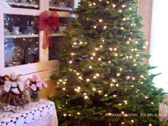 Shoestring Elegance: The Perfect Tree and a Good Friend