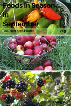 A Green and Rosie Life: Veg, Fruit and Foraged Foods in Season in September