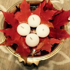 Fallen maple leaves floating in an uruli
