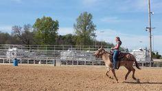 Jackpot Races- Mule Day 2015