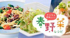 かんたん美味しい!春野菜レシピ