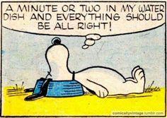 Snoopy has the right idea