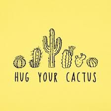 cactus hug some - Google Search