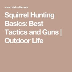 Squirrel Hunting Basics: Best Tactics and Guns | Outdoor Life