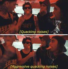 AGGRESSIVE QUACKING NOISES