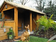 tiki headz workshop  is an entrant for Shed of the year 2015 via @unclewilco  #shedoftheyear