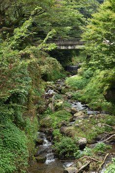 こま参道の入り口横にある橋から上流を眺めます。民家もありますが山深い緑に包まれた風景が広がります。そろそろ夏も終わり。こんな景色もあとわずか Photography Portfolio, Beautiful Scenery, River, Nature, Outdoor, Places, Outdoors, Naturaleza, Outdoor Games