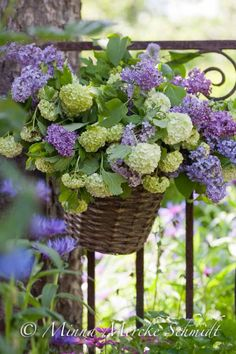 Hydrangeas and lilacs in a pot hanging on a fence