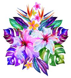 Find Tropical Flowers Watercolor Hibiscus Plumeria Monstera stock images in HD and millions of other royalty-free stock photos, illustrations and vectors in the Shutterstock collection. Thousands of new, high-quality pictures added every day. Tropical Flowers, Tropical Flower Tattoos, Hawaiian Flowers, Exotic Flowers, Tropical Plants, Purple Flowers, Hawaiian Flower Drawing, Plumeria Flower Tattoos, Flores Plumeria