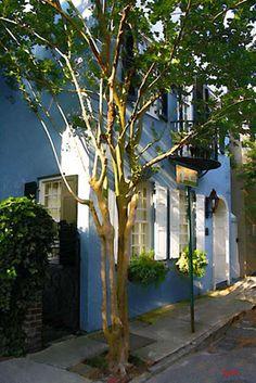 Charleston Art Gallery - Paul Silva