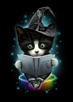 Displate Poster THE MAGICIAN cat #kitten #magic #magician #space #fantasy