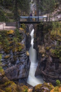 12 Awesome Hikes and Excursions in Jasper National Park in Canada
