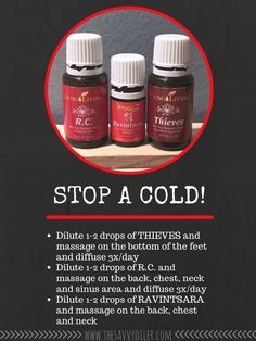 Stop a Cold with Essential Oils Young Living Essential Oils: Thieves, R. and… by joann Essential Oils For Colds, Essential Oil Diffuser Blends, Essential Oil Uses, Natural Essential Oils, Thieves Essential Oil, Young Living Essential Oils Recipes Cold, Essential Ouls, Ravintsara, Aromatherapy Oils