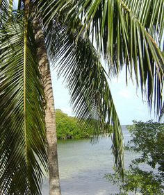 great hiking in the keys  John Pennecamp State Park...Key Largo (1street away from my house!)