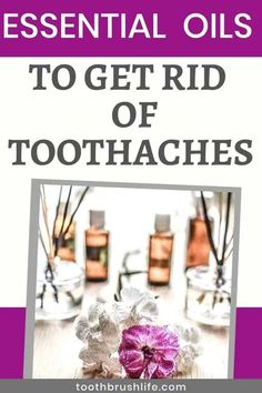Essential Oils to get rid toothaches. Cure for toothache. Essential oils to help improve oral health and heal teeth. Advice from a dental hygienist. Oral Health, Health And Wellness, Health Tips, Causes Of Bad Breath, Dental Problems, Dental Floss, Dental Hygienist, Mouthwash, Orthodontics
