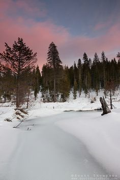 """""""Alder Creek Sunset 2"""" - Photograph of a sunset at an iced over Alder Creek in the Tahoe Donner area of Truckee, California."""
