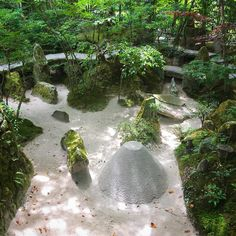 宝泉院宝楽園 いつ見ても不思議なお庭で、どこをどう切り取るかわかりませんそれもそのはずです✨仏神の世界を表し、宇宙の響きを感じとるという壮大なお庭なので無理ですねでも不思議と元気になるんです気が養われるんでしょうねそれだけで来たかいがあります来週も良い一週間になりますように #宝泉院 #宝楽園 #大原  #京都 #京都旅行 #京都好き #京都が好きな人と繋がりたい #京都が好き #京都はおまかせ #そうだ京都行こう #日本に京都があってよかった #土曜日の小旅行 #instagramjapan #instakyoto #kyotogram #kyoto #kyotojapan #kyototravel  #peace #kyototrip #kyotolikes #kyotolove #lovers_nippon #ig_japan #likes #japantravel  #japangram #japan