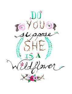 do you suppose she is a wildflower
