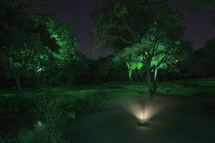 Texas Private Estate Landscape Lighting