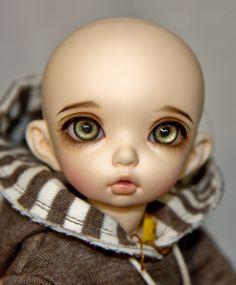 Littlefee Bisou