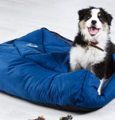 Snug Camera Supplies, Camping Store, Anaconda, Good Sleep, Pet Beds, Sleeping Bag, Outdoor Camping, Caravan, Snug