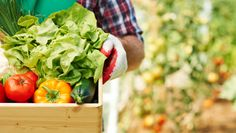 Along with all the fresh veggies you'll get to enjoy, starting a garden has other good-for-you bonuses: More happiness and less stress.