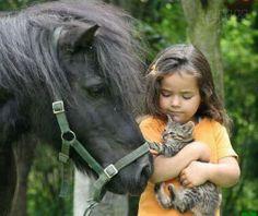 Sweet pony, precious kitten, cute child. Lovely photo!