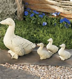 Main image for Duck Family
