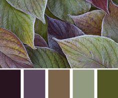farbkombinationen-und-wandfarbe-ideen-mit-farbe-lila-und-gruen