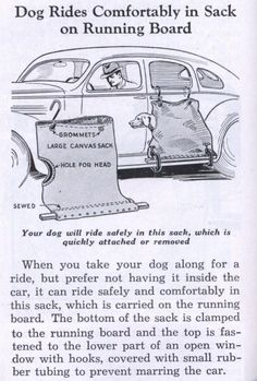 """Your dog will ride safely in this sack."" Vintage Ad June 1936 issue of Popular Mechanics.Dog Rides Comfortably in Sack on Running Board"
