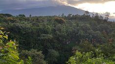 Nature of Indonesia  Jawa Timur, Batu, Malang