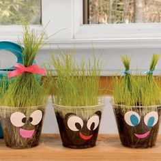 "All you needs are: plastic cup potting soil grass seeds colored paper to make mouth and eyes Have your child design a face on the outside of the cup. Next, fill your cup with potting soil, about and 1 inch to 1/2 inch from the top. Next spread your grass seeds on top of the potting soil. Mix them into the soil. (You will not want to bury the seeds deep into the soil.) Water your grass when dry and in a week or so you will have a funny looking character! The kids will love cutting ""the hair!"""