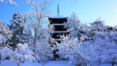 京都 仁和寺 五重塔 雪