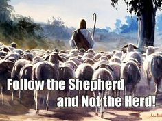 Follow the Shepherd, Not the Herd. - Galatians 1:10 For do I now persuade men, or God? or do I seek to please men? for if I yet pleased men, I should not be the servant of Christ.""