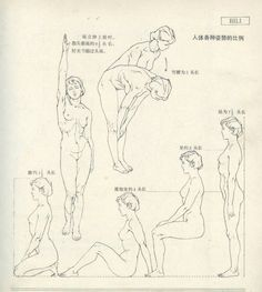 Anatomy for the Artist Drawing Body Proportions, Human Body Drawing, Human Figure Drawing, Figure Sketching, Figure Drawing Reference, Art Reference Poses, Human Anatomy Drawing, Anatomy Sketches, Anatomy For Artists