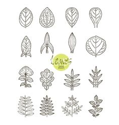 Collection of varieties of leaf shape vector by FarbaKolerova on VectorStock®